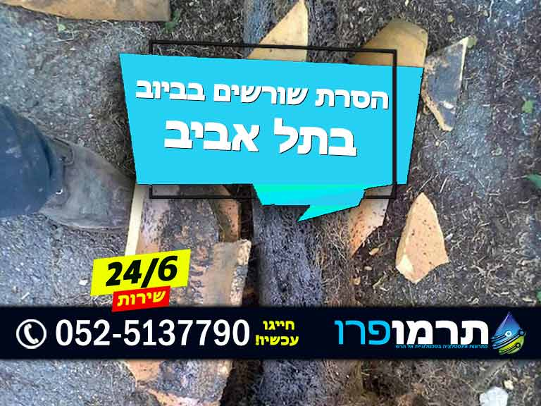 ניקוי שורשים בביוב בתל אביב, הסרת שורשים בביוב בתל אביב